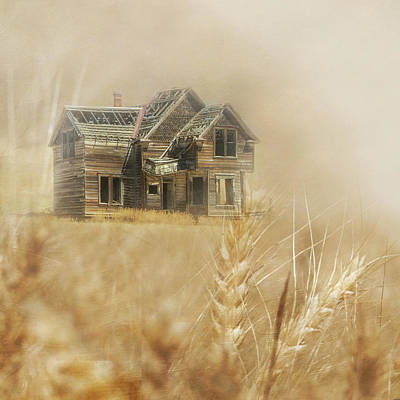 Nelson Homestead 2 Art Print by Angie Vogel
