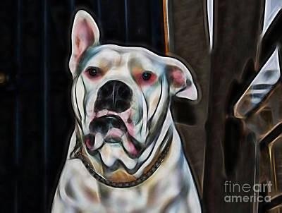 Dog Mixed Media - Nelson by Marvin Blaine