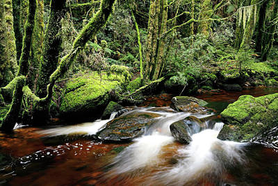 Photograph - Nelson River by Nicholas Blackwell