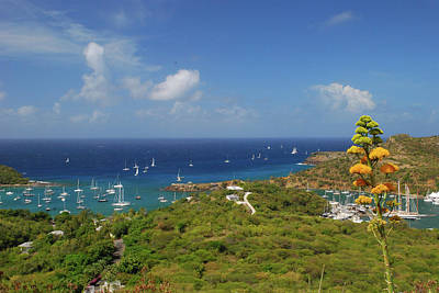 Photograph - Nelson's Dockyard Antigua by Gary Wonning