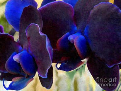 Blue Diamond Orchids Photograph - Nemacolin Orchid Close-up by Shelly Weingart