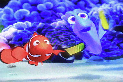 Photograph - Nemo And Dory by Donna Kennedy