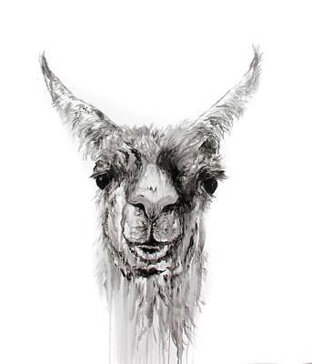 Drawing - Nemorio by K Llamas