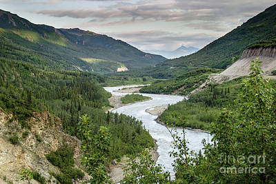 Photograph - Nenana River  by Richard Smith
