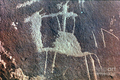Photograph - Neolithic Petroglyph by Granger