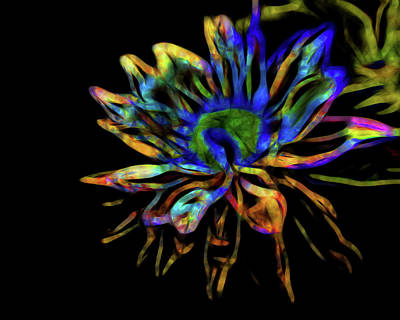 Photograph - Neon Abstract Lily by Judy Vincent