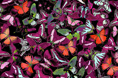 Colorful Birds Wall Art - Painting - Neon Butterflies by JQ Licensing