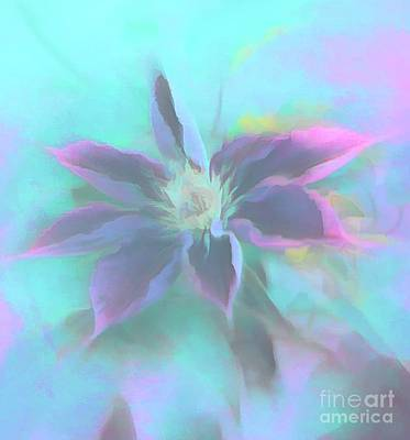 Photograph - Neon Clematis by Cathy Donohoue