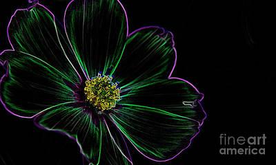 Digital Art - Neon Glow by Wendy Wilton