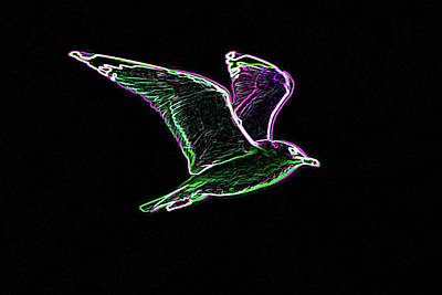 Neon Gull Art Print by Betty LaRue