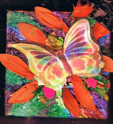 Neon Lights Butterfly On Boxed Canvas Art Print by Anne-Elizabeth Whiteway
