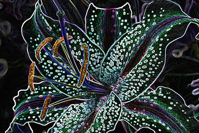 Digital Art - Neon Lily by Wendy Wilton