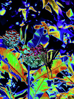 Digital Art - Neon Nature by Kimmary I MacLean