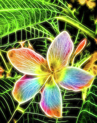 Photograph - Neon Plumeria by Bonnie Davidson