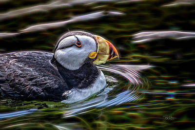 Photograph - Neon Puffin by Bill Posner