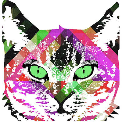 Painting - Neon Rainbow Kitty Cat Poster Print By Robert R by Robert R Splashy Art Abstract Paintings