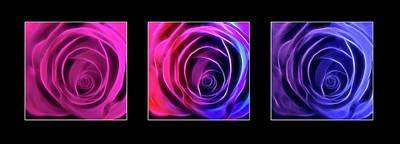 Neon Roses Triptych On Black Art Print