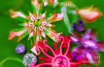 Photograph - Neon Stars by Tamarra Tamarra