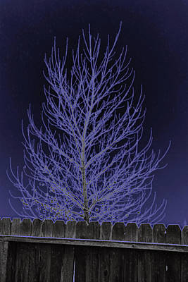 Neon Tree Art Print