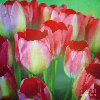 Photograph - Neon Tulips by Patricia Strand