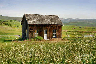 Photograph - Nephi Moss Cabin by Roxie Crouch
