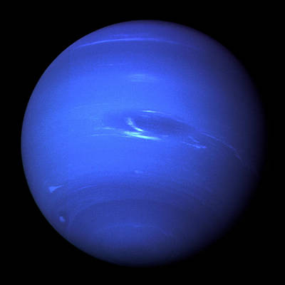 Photograph - Neptune Full by NASA and JPL
