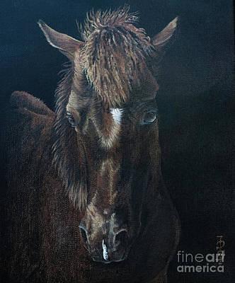 Nervous Colt  Milltown Fair Art Print by Pauline Sharp