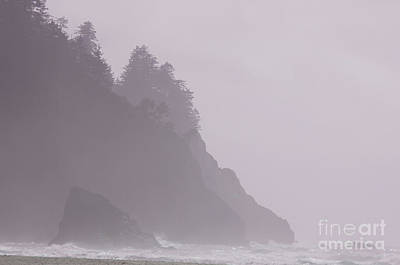 Photograph - Neskowin Beach Rosy Sea Fog by Rick Bures