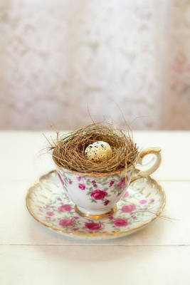 Photograph - Nest And Tea Cup by Eleanor Caputo