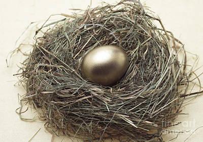 Nest With Golden Egg Art Print