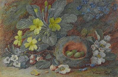 Yellow Primrose Painting - Nest With Primroses On A Bank by MotionAge Designs