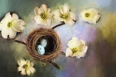 Dogwood Blossom Photograph - Nesting Among The Dogwoods by Darren Fisher