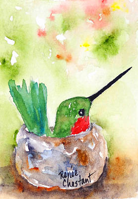 Colibri Painting - Nesting Anna's Hummingbird by Renee Chastant