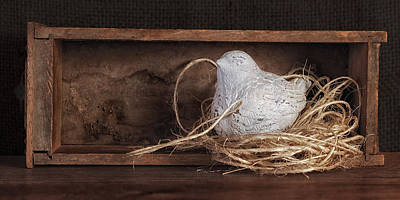Ceramic Art Photograph - Nesting Bird Still Life II by Tom Mc Nemar