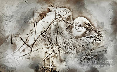 Digital Art - Nesting Egret - Digital Art by David Smith