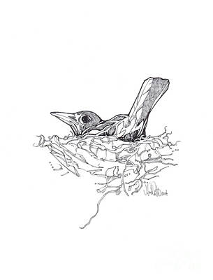 Art Print featuring the drawing Nesting by Michael Ciccotello