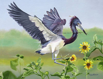 Painting - Nesting Tri Colored Heron by Phyllis Beiser