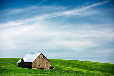 Agriculture Photograph - Nestled In Green by Todd Klassy