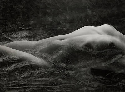 Nude Photograph - Nestled In The Nature by Weber Norbert