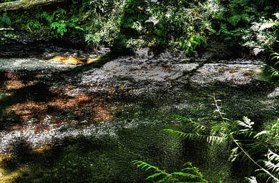 Rolling Stone Magazine Covers - Nestucca River Branch 3060 by Jerry Sodorff