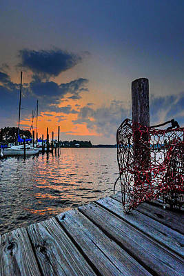 Photograph - Net On The Dock Vertical by Michael Thomas