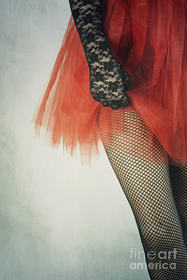 Vintage Erotica Photograph - Net Stockings by Jelena Jovanovic