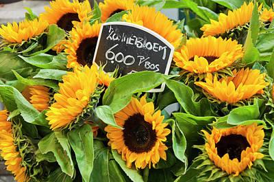 Amsterdam Market Photograph - Netherlands Sunflowers by Joan Carroll