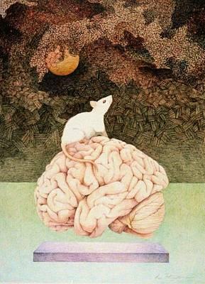Neuroscience Art Print by Tara Peterson