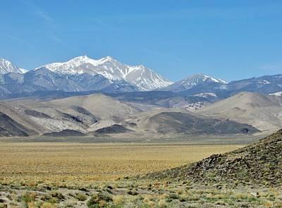 Photograph - Nevada Lovely by Marilyn Diaz