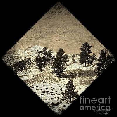 Photograph - Nevada Touch by Bobbee Rickard