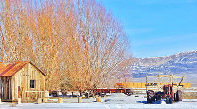 Photograph - Nevada Winter by Marilyn Diaz