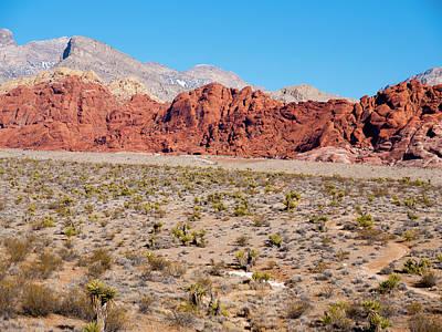 Nevada's Red Rocks Print by Rae Tucker