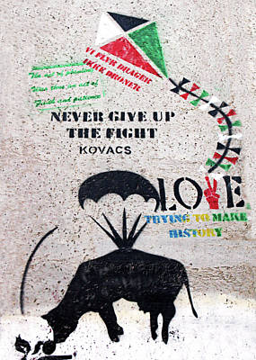 Photograph - Never Give Up The Fight by Munir Alawi