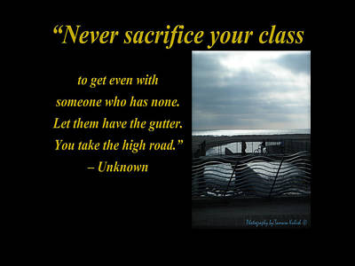 Photograph - Never Sacrifice Your Class To Get Even by Tamara Kulish